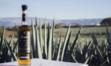 TEQUILA, JALISCO. LA CUNA DEL AGAVE AZUL